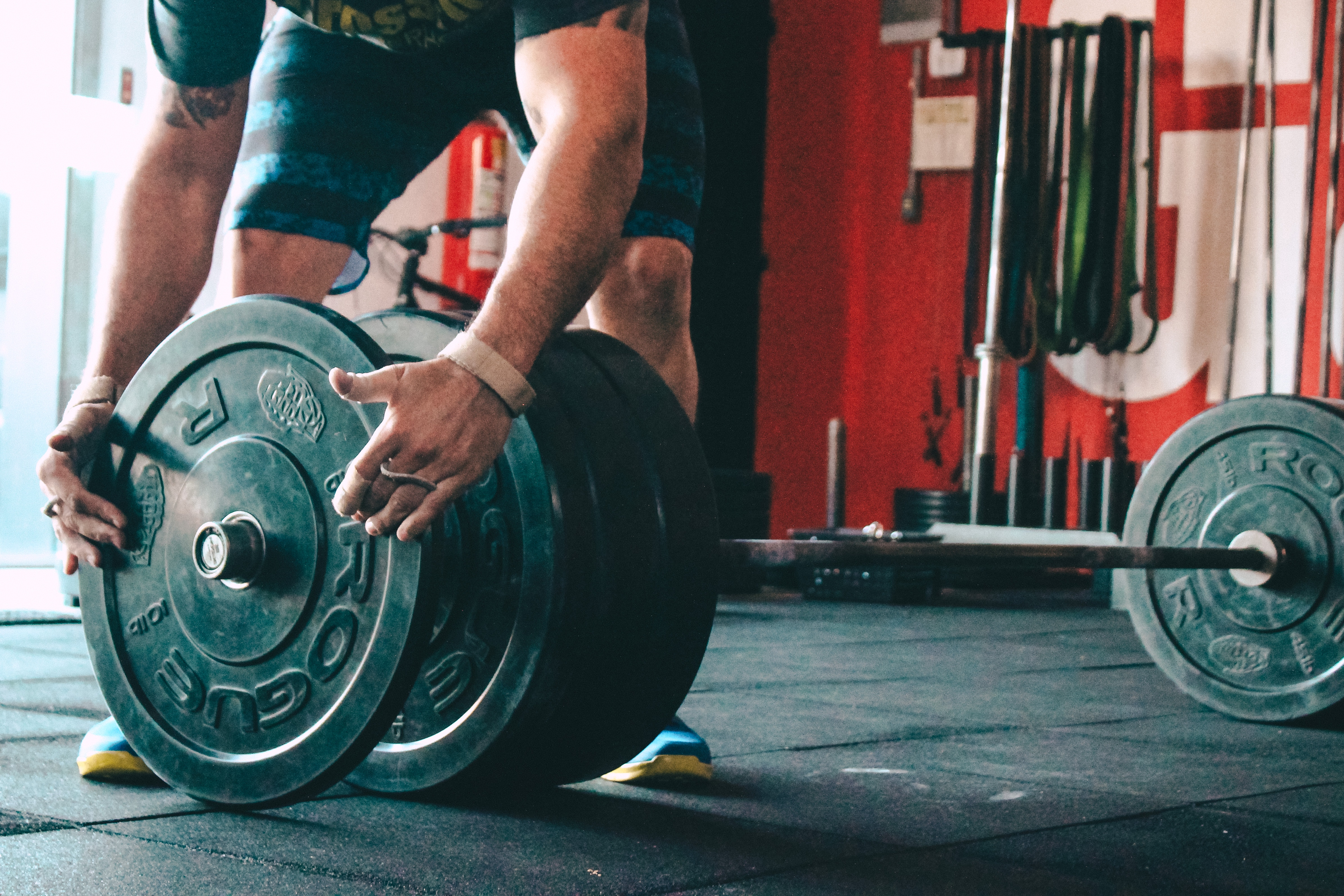 Bodybuilding Nutrition 101: The Ins and Outs of Bulking | Gazelle Nutrition  Lab